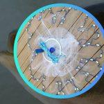 Findfish ловушка для рыбы