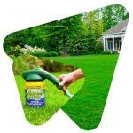 Grass Shot газон